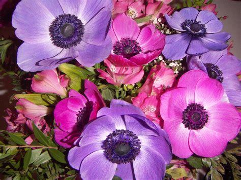 fiori di with me fiori di compleanno