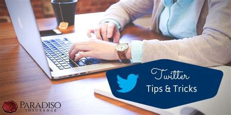 twitter tips for small businesses paradiso insurance