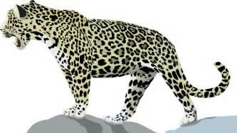 Jaguar Clipart Jaguar 3 Clip At Clker Vector Clip