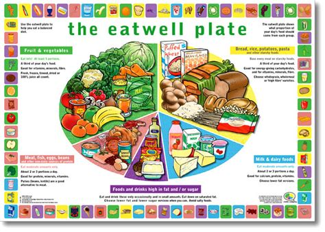 Printable Food Poster | free printable food safety posters from eatwell plate