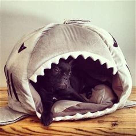 shark bed for dogs all things shark on pinterest sharks shark tattoos and