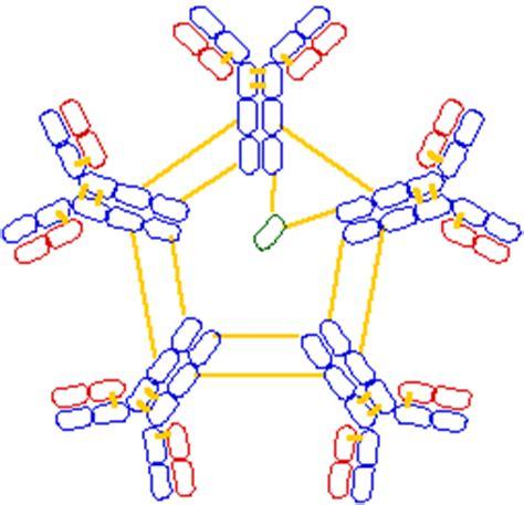 m protein vs igm nerve autoantibodies