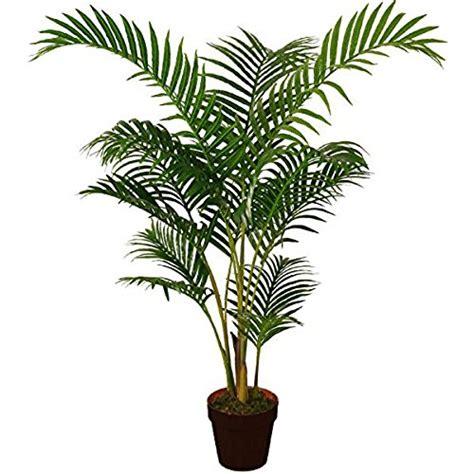 indoor plants uk artificial indoor plants trees amazon co uk
