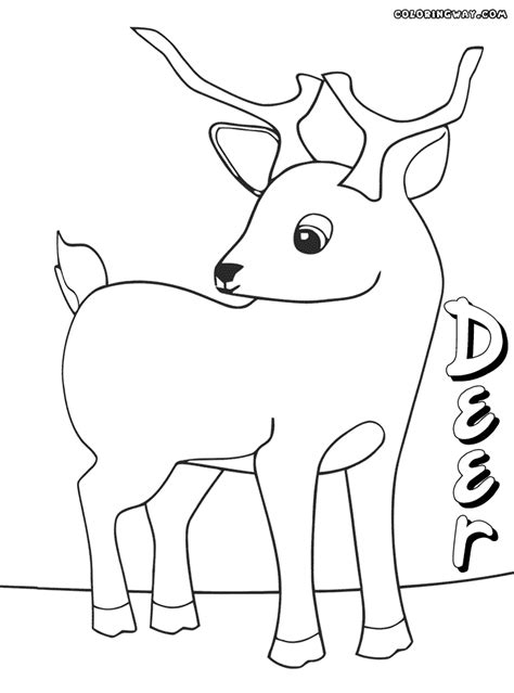 coloring pages of cute deer deer coloring pages coloring pages to download and print