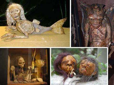 8 Wacky Museums From Around The World by Top 10 Macabre Museums The List Cafe