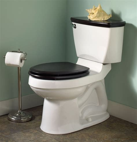 how to a for toilet toilet issues