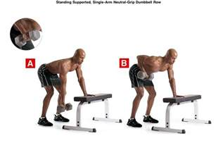 dumbbell bench rows single arm row exercise pinterest dumbbell exercises