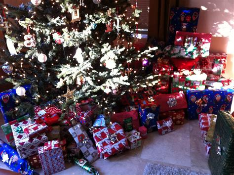 christmas break in beautiful az the stone family