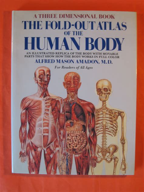 anatomy for conformity classic reprint books anatomy
