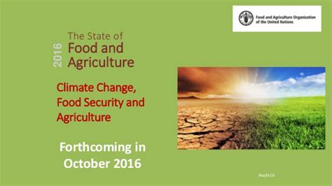 agriculture climate change and food security in the 21st century our daily bread books the state of food and agriculture 2016 2016 climate