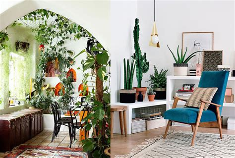 ideas para decorar interiores 17 ideas para decorar tu sala de estar con plantas en esta