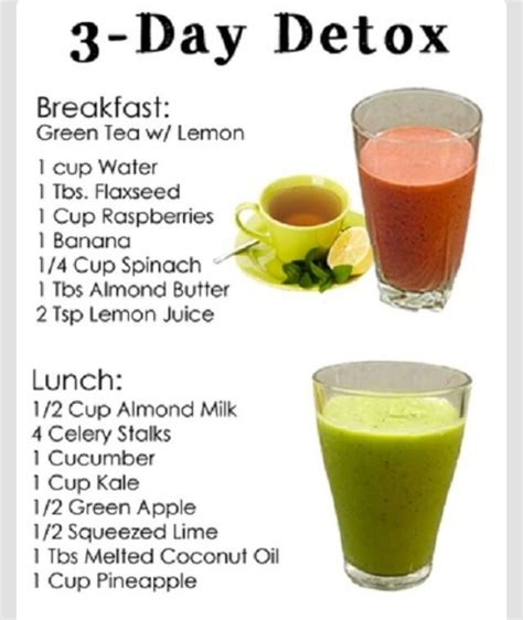 Herbal Detox Breakfast Recipes by 3 Day Detox For Your Finoms 225 Gok