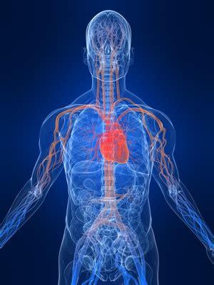 poor blood circulation  high blood pressure manna health