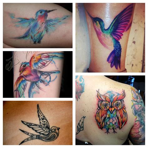 watercolor tattoo zetten 100 50 amazing hummingbird designs