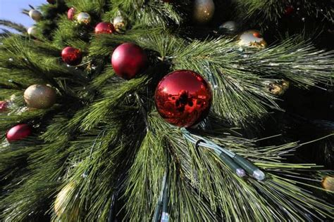 christmas tree sales off to strong start retailers say