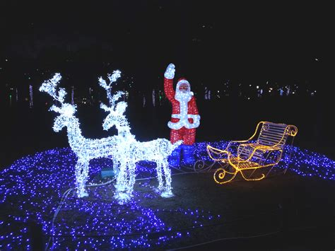 fun free daegu travel places to see christmas light