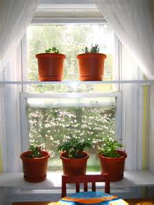 indoor decorating ideas plants inside rooms