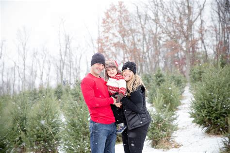 pittsburgh christmas tree farms becca baker photography