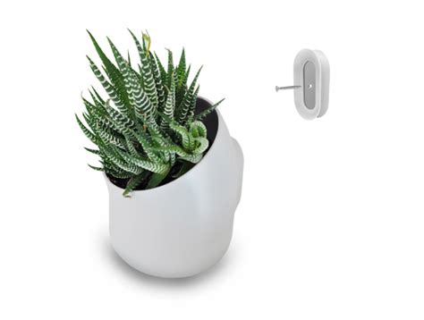 Urbio Wall Planter by Heavy Petal 187 Urbio Vertical Garden