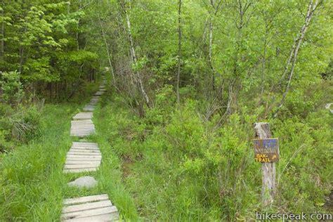 vernal pool oak trails binghamton university ny