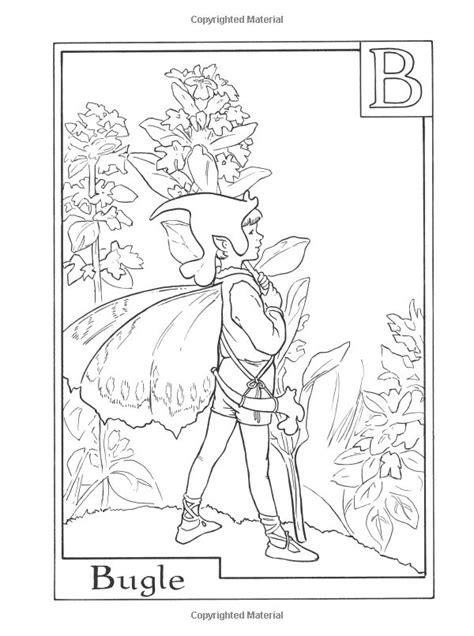 fairies in bloom a flower coloring book books 1000 images about printable coloring book pages vintage
