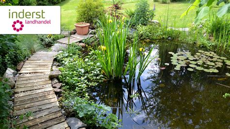 costruire un laghetto in giardino immagini laghetti da giardino giardino con laghetto with