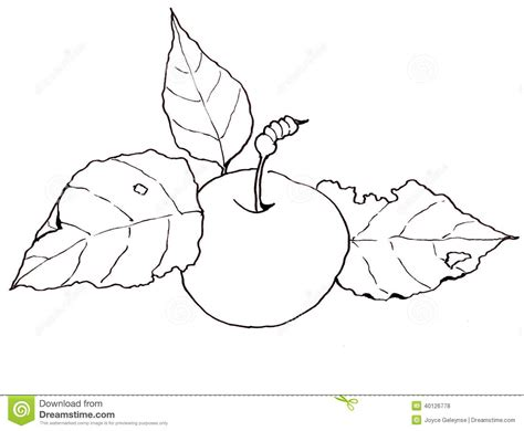 Freehand Clip Art Drawing Of An Apple With Leaves Stock Free Printable Leaf Coloring Pagesll L