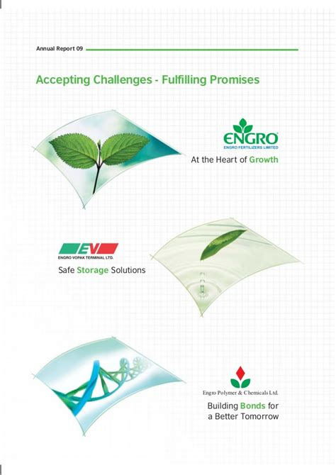 pattern energy board of directors ar engro2009