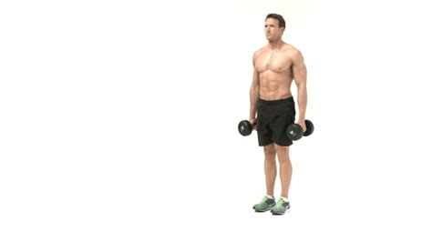 dumbbell bench lunges leg workout 2 best home dumbbell workouts to build lean