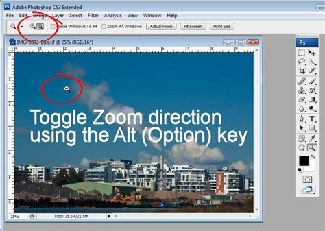 reset zoom tool photoshop 8 secrets of the zoom tool in photoshop