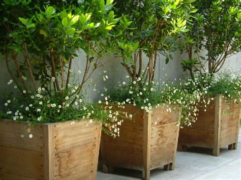planters for container gardens wooden large container pots see similar ones outside the