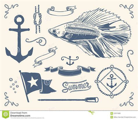boat captain graphics vintage nautical set stock vector image of fish border