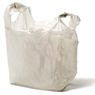 Bathroom Lining Paper Keep Bags Out Of The Landfill 10 Uses For Plastic Bags