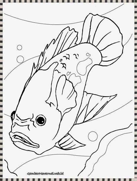 printable mewarnai 65 best gambar mewarnai images on pinterest coloring