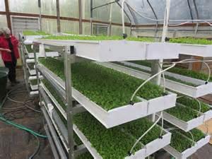 microgreens growers supply