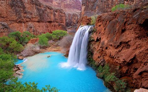 grand canyon arizona usa havasu falls blue green waters