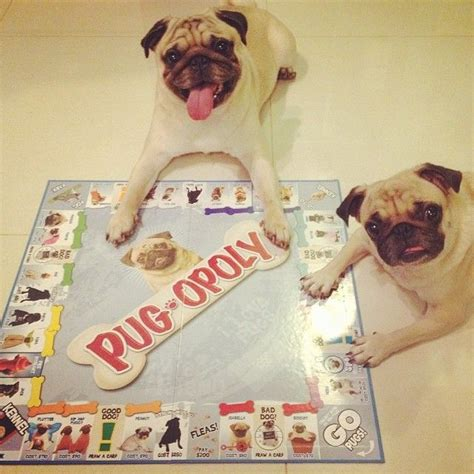 pug opoly 158 best pugs images on