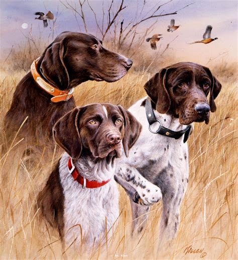 dogs painting pointing paintings by jim killen 8