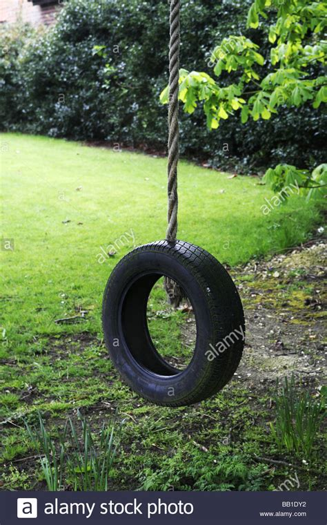 tyre rope swing rope swing old tyre hanging from a rope in a tree at