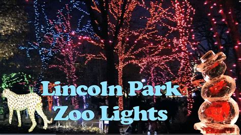 lincoln park zoo lights lincoln park zoo lights in 4k december 2017 chicago