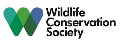 wildlife conservation society wcs biomeme saving siberian tigers