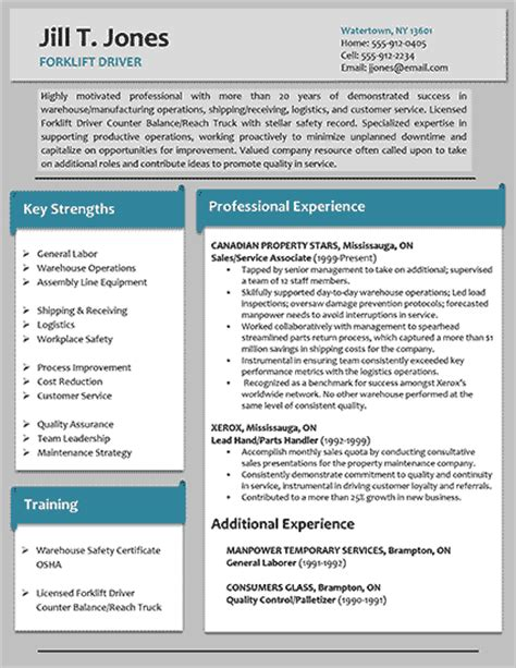 sle resume professional formats