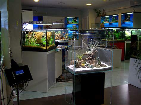 aquarium design store elos opening 5 new aqua studios in 2012 france