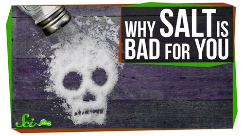 is salt bad for dogs why is salt so bad for you anyway doovi