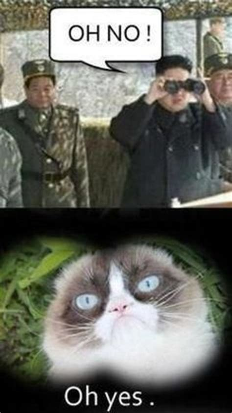 Funny Angry Cat Meme - 1000 images about grumpy cat on pinterest grumpy cat