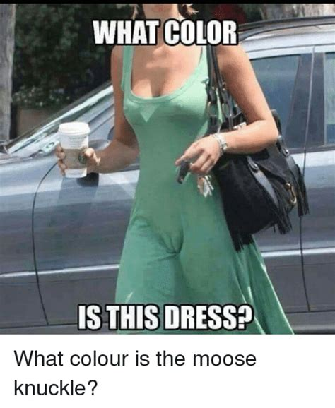 Casual Sex Meme - what color is this dress what colour is the moose knuckle