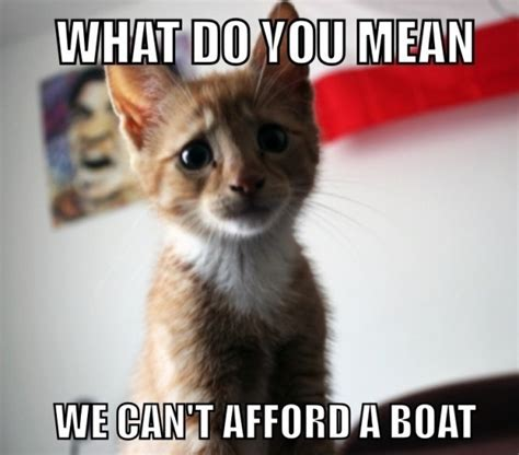 Unhappy Cat Meme - sad cat memes image memes at relatably com