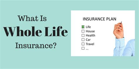 How Does Whole Life Insurance Work?   Financial Sumo