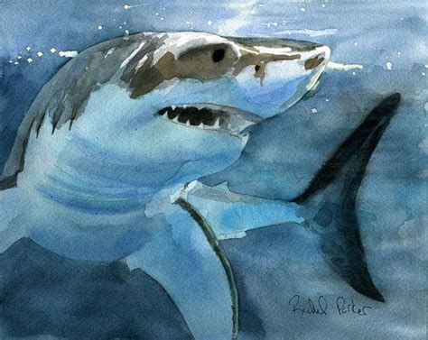 shark painting 25 best ideas about shark painting on whale