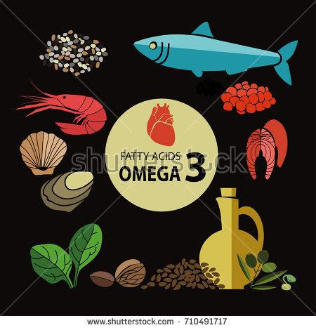 highest content light foods highest content omega3 healthy stock vector